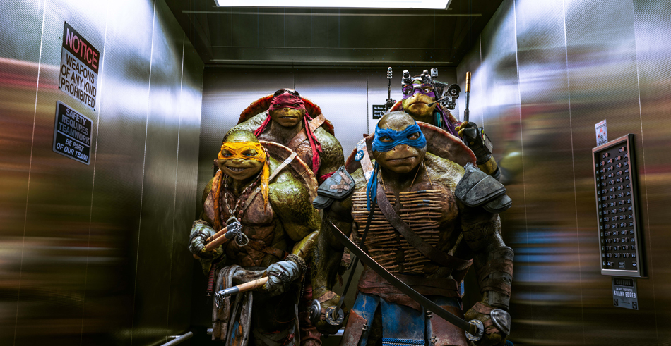 The Turtles - TMNT 2014