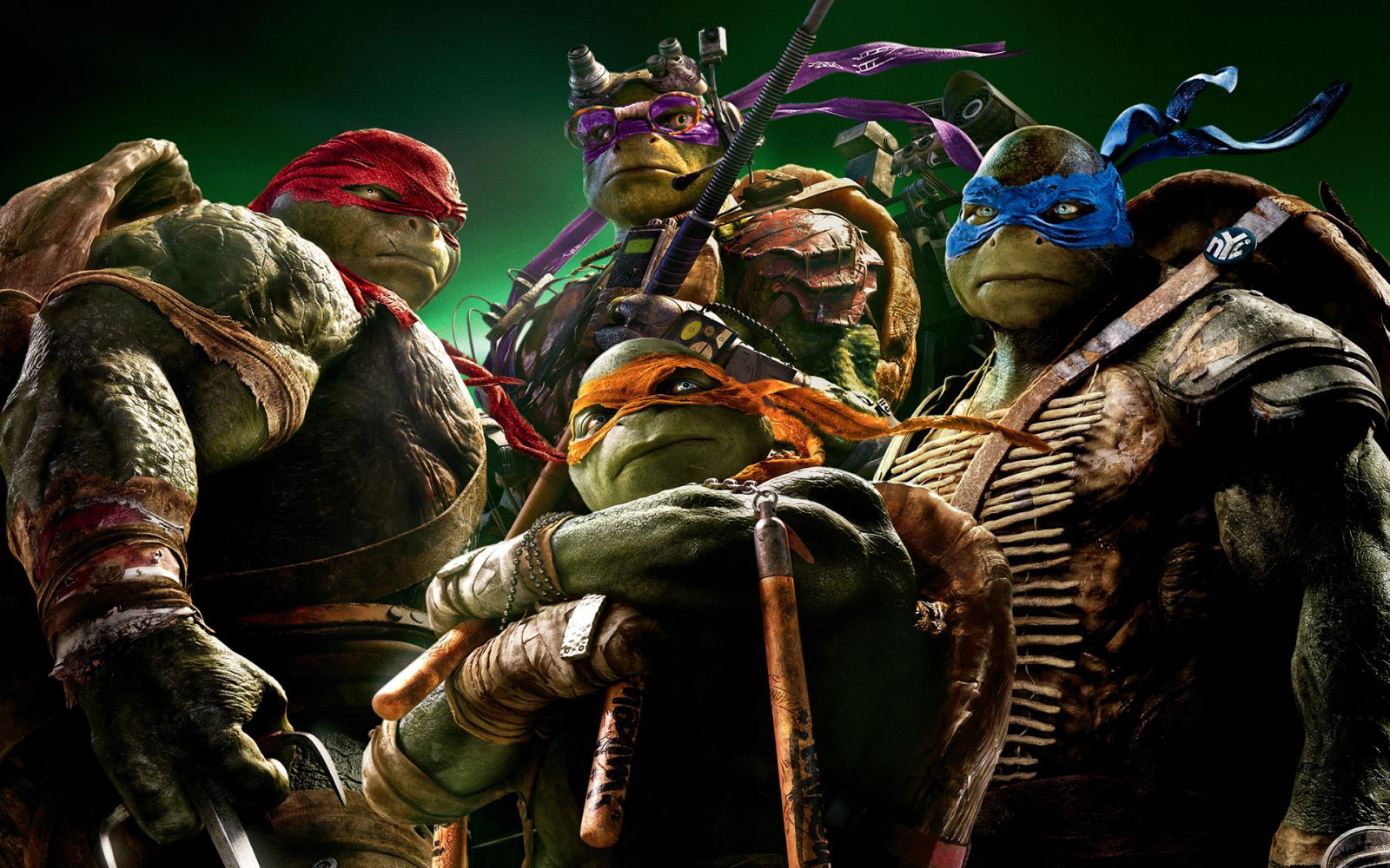 Teenage Mutant Ninja Turtles circa 2014