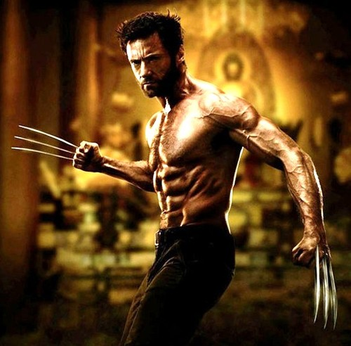 'The Wolverine' (2013)