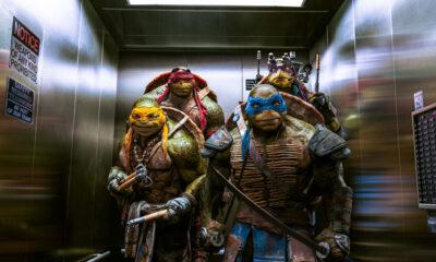 The Turtles - TMNT 2014