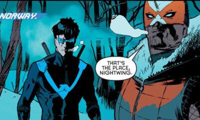'Nightwing: Rebirth' #3 art by Javier Fernandez & Chris Sotomayor