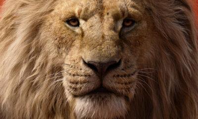 The Lion Kind (Walt Disney)