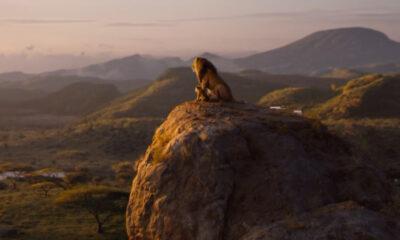 The Lion King (Walt Disney)