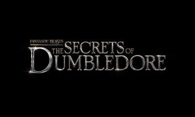 Fantastic Beasts: The Secrets of Dumbledore (Warner Bros. Pictures)